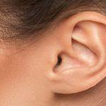 Sapņu tulks ausis