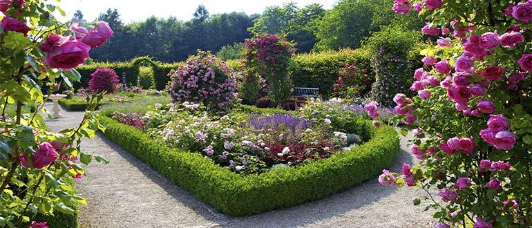Sapņu tulks dārzs