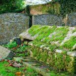 Sapņu tulks kaps