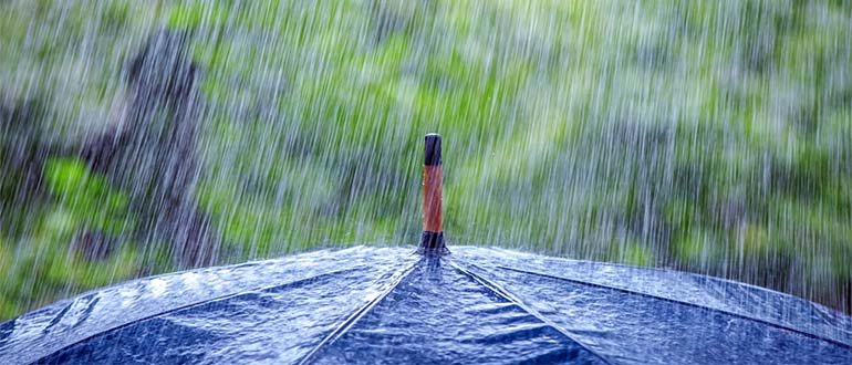 Sapņu tulks lietus