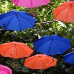 Sapņu tulks lietussargs