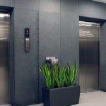 Sapņu tulks lifts