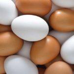 Sapņu tulks olas