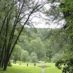 Sapņu tulks parks
