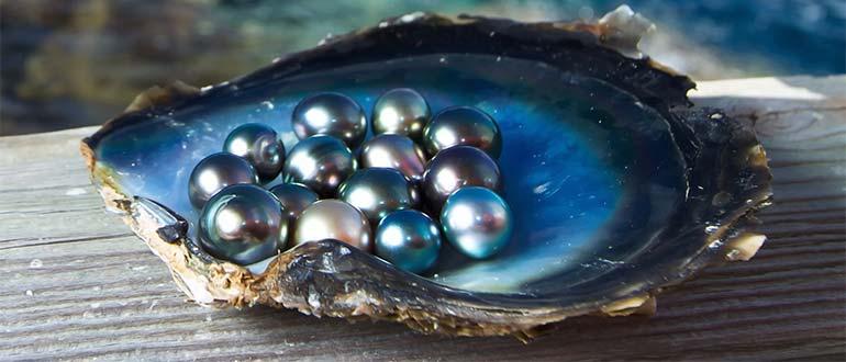 Sapņu tulks pērles