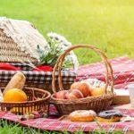 Sapņu tulks pikniks