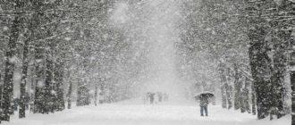 Sapņu tulks sniegputenis