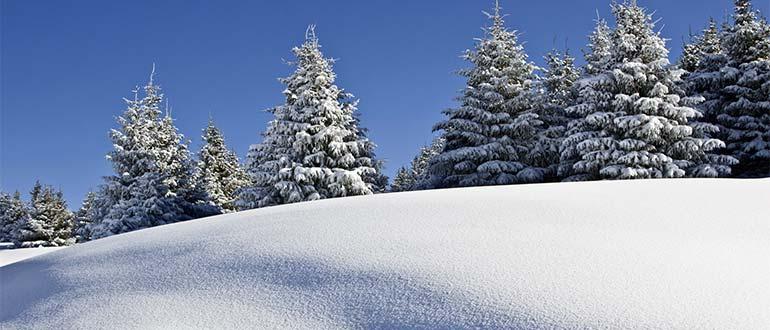 Sapņu tulks sniegs