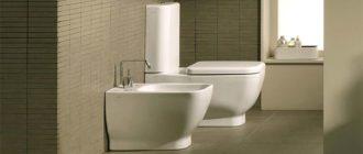 Sapņu tulks tualetes pods