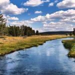 Sapņu tulks upe