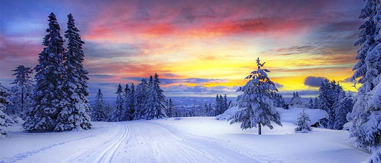 Sapņu tulks ziema