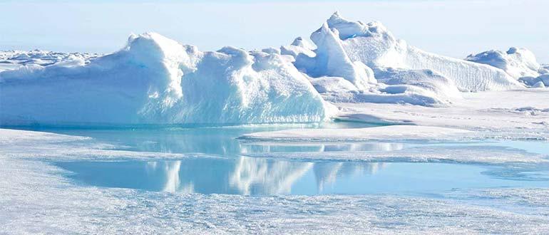 Sapņu tulks ziemeļpols